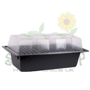 Propagators (Order in Products)