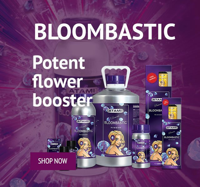 Bloombastic